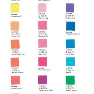 Pantone – nylon brights – swatch card